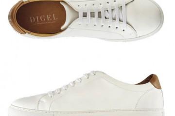 Digel1