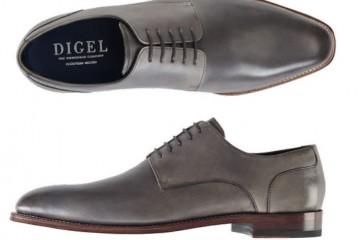 Digel11